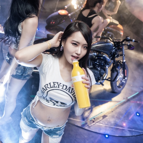 HARLEY-DAVIDSON Party 모델